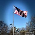 American Flag by Lisa Soreo