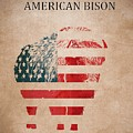 American Mammal The Bison by Dan Sproul