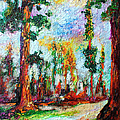 American National Parks Redwood Trees by Ginette Callaway