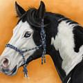 American Paint Horse - Soft Pastel by Svetlana Ledneva-Schukina
