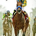 American Pharoah And Victor Espinoza Win The 2015 Preakness Stakes. by Thomas Pollart