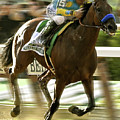 American Pharoah And Victory Espinoza Win The 2015 Belmont Stakes by Thomas Pollart