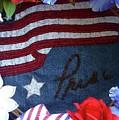 American Pride by Barbie Corbett-Newmin