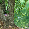 American Pride By The Pond by Jennifer Gauthier