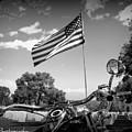 American Renagades by Rhonda DePalma