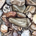 American River Rocks by Brenda Williams