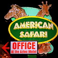 American Safari Motel by Betsy Warner