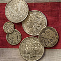 American Silver Coins by Randy Steele