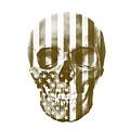 American Skull Beige by Del Art