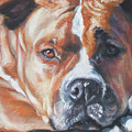 American Staffordshire Terrier by Lee Ann Shepard