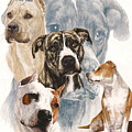 American Staffordshire Terrier Medley by Barbara Keith