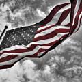 American Wave Sc by Michael Frank Jr