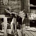 American Wild West Sepia Tone by Mel Steinhauer