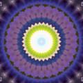 Amethyst  by Vicki Lynn Sodora