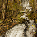 Amicola Falls Gushing by Barbara Bowen