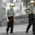 Amish Brothers by Don Wolf