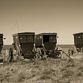 Amish Buggies by Steven Bateson