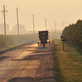 Amish Buggy And Corn Over Your Head by David Arment