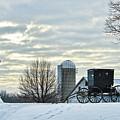 Amish Buggy At Morning by David Arment