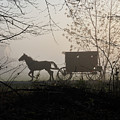 Amish Buggy Foggy Sunday by David Arment