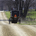 Amish Buggy March 2016 by David Arment
