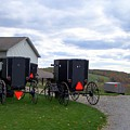 Amish Country Carts Autumn by Charlene Cox