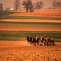 Amish Country Farm Landscape by Blair Seitz