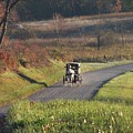Amish Country Horse And Buggy In Autumn by Charlene Cox
