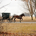 Amish Dream 1 by David Arment