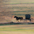 Amish Dream by David Arment
