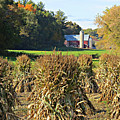 Amish Farm Country Fall by Stephanie Forrer-Harbridge