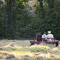 Amish Farmer Raking Hay At Dusk by David Arment