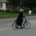 Amish Girl Going To Work by Christine Clark