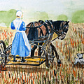 Amish Girl With Buggy by Arlene  Wright-Correll
