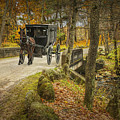 Amish Horse And Buggy Crossing A Bridge by Randall Nyhof