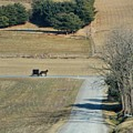 Amish Horse And Buggy On A Country Road by Dan Sproul