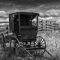 Amish Horse Buggy In Black And White by Randall Nyhof