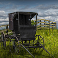 Amish Horse Buggy by Randall Nyhof