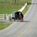 Amish Life by Joyce Huhra