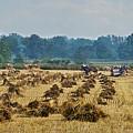 Amish Making Grain Shocks by David Arment