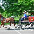 Amish Merchant 5671 by Guy Whiteley