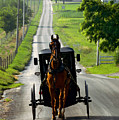 Amish Morning Commute by Lawrence Boothby