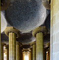 Among The Pillars by Randy Scherkenbach