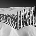 Amoreira Shadows by John McKinlay