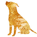 Amstaff Gold Silhouette Large Poster by Joanna Szmerdt