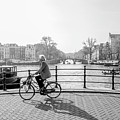 Amsterdam Bike Ride by Jose Rodriguez