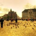 Amsterdam City by Svetlana Sewell