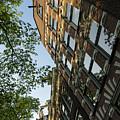 Amsterdam Spring - Fancy Brickwork Glow - Left Vertical by Georgia Mizuleva