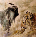 Amur And Timur by Alexa Nelipa