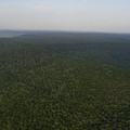 An Aerial View Shows The Forests by Stephen Alvarez
